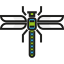 bug, Animals, Animal Kingdom, Dragonfly, insect, wings Black icon