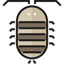 Animals, Animal Kingdom, Bedbug, insect, bug Black icon