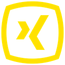 Xing icon Gold icon