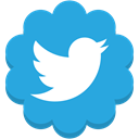 Social, twitter, media, Flower, round DodgerBlue icon