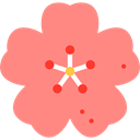 plant, Cherry Blossom, nature, spring, floral, Bloom, blossom, Cherry LightCoral icon