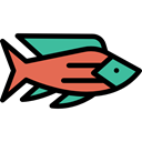 meat, food, Foods, Animals, Supermarket, fish, fishes, Animal, Meats Black icon