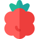 Food And Restaurant, raspberry, food, vegetable, Fruit, Blackberry Tomato icon