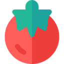 diet, Tomato, Healthy Food, vegan, Food And Restaurant, food, organic, Fruit, vegetarian Tomato icon