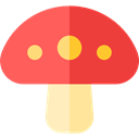 Food And Restaurant, Fungi, Muscaria, nature, Mushroom, food Tomato icon