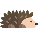 hedgehog, wildlife, Animals, Animal Kingdom, zoo DarkOliveGreen icon