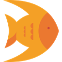 fish, Aquatic, ocean, Aquarium, Sea Life, Animals Goldenrod icon