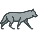 wolf, Animals, zoo, Animal Kingdom, Wild Life Black icon