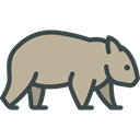 Wild Life, zoo, Wombat, Animals, Animal Kingdom DarkGray icon