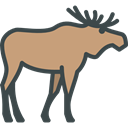 Animal Kingdom, Wild Life, Animals, zoo, Moose RosyBrown icon