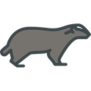 badger, Animals, Wild Life, Animal Kingdom, zoo Icon