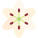 nature, lily, Flower, blossom, Botanical, petals Cornsilk icon