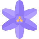 Botanical, blossom, petals, nature, Flower, bluebell MediumPurple icon