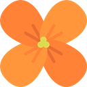 Botanical, nature, blossom, petals, Wallflower, Flower Coral icon