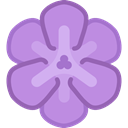 Botanical, Freesia, Flower, blossom, nature, petals Plum icon