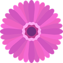 Botanical, nature, blossom, Gerbera, petals, Flower Orchid icon