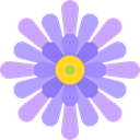 petals, nature, blossom, Flower, Botanical, Aster Plum icon