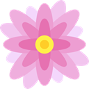 nature, blossom, petals, Botanical, Flower, Nymphea Plum icon