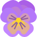 Flower, petals, blossom, Pansy, nature, Botanical MediumPurple icon