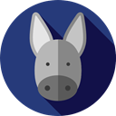 Animals, Donkey, Animal Kingdom, zoo, Wild Life MidnightBlue icon