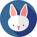 rabbit, Animal Kingdom, zoo, Wild Life, Animals SteelBlue icon