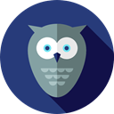 zoo, Animal Kingdom, Animals, Wild Life, owl DarkSlateBlue icon