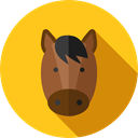 horse, Wild Life, Animals, Animal Kingdom, zoo Gold icon