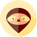 Animals, Animal Kingdom, zoo, sloth, Wild Life Moccasin icon