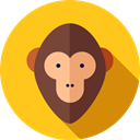 zoo, Wild Life, Animals, Animal Kingdom, monkey Gold icon