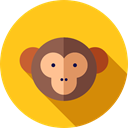 Animals, Wild Life, Animal Kingdom, monkey, zoo Gold icon