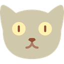 Animals, Cat, kitty, Breed, pet, domestic, Feline Silver icon
