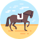 equine, Hippic, sports, Sports And Competition, horse, Olympic Games, equestrian PaleTurquoise icon