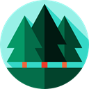 landscape, nature, Forest, trees, pines, woods PaleTurquoise icon