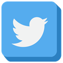 twitter, social media CornflowerBlue icon