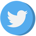 social media, twitter CornflowerBlue icon