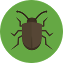 bug, insect, Animals, beetle, Animal Kingdom OliveDrab icon
