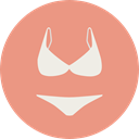 underwear, brassiere, panties, lingerie, knickers, Femenine, Bra, thong, fashion DarkSalmon icon