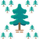 Tree, nature, garden, Forest, Pine, yard, Botanical DarkCyan icon