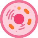 science, virus, Cell, education, Biology MistyRose icon