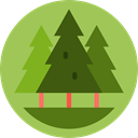 Pine, trees, pines, nature, Forest, Park, woods YellowGreen icon