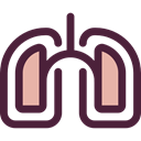 medical, organ, Lungs, Breath, Anatomy, Lung, Healthcare And Medical DarkSlateGray icon
