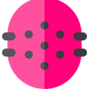 food, Fruit, Dessert, healthy, fresh, Food And Restaurant, Prickly Pear DeepPink icon