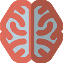 people, medical, Brain, Body Part, Body Organ, Human Brain, Healthcare And Medical IndianRed icon