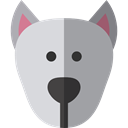 Animal, dog, pet, Animals, mammal, Breed DarkGray icon