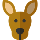 zoo, Animals, kangaroo, Wild Life, Animal Kingdom, Marsupial DarkGoldenrod icon