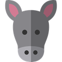 zoo, Animals, Donkey, Wild Life, Animal Kingdom Gray icon
