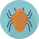 bug, insect, Animals, beetle, Animal Kingdom SkyBlue icon