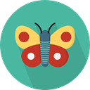 insect, butterfly, Animals, Moths CadetBlue icon