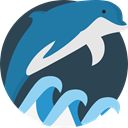 Animal, dolphin, Animals, Aquarium, Aquatic, Sea Life DarkSlateGray icon