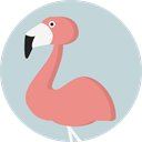 bird, zoo, Animals, Flamingo, wildlife, Animal Kingdom LightGray icon
